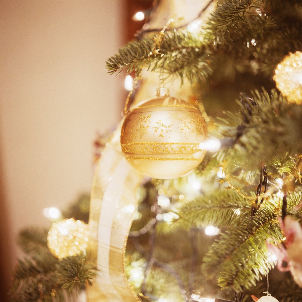 ornament hanging from decorated christmas tree - Best Decorated Christmas Trees 2014